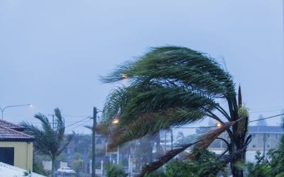 Tips for Preventing Wind Damage To Your Property